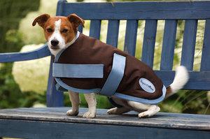 Couverture Aircool pour chien equi theme