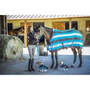 Couverture polaire Stripe equi theme
