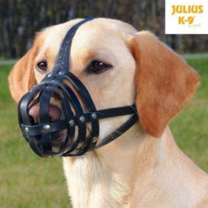 Muselière Julius-K9®, peau de buffle