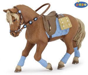 Equipements du cheval