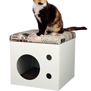 cat box maison pour chat