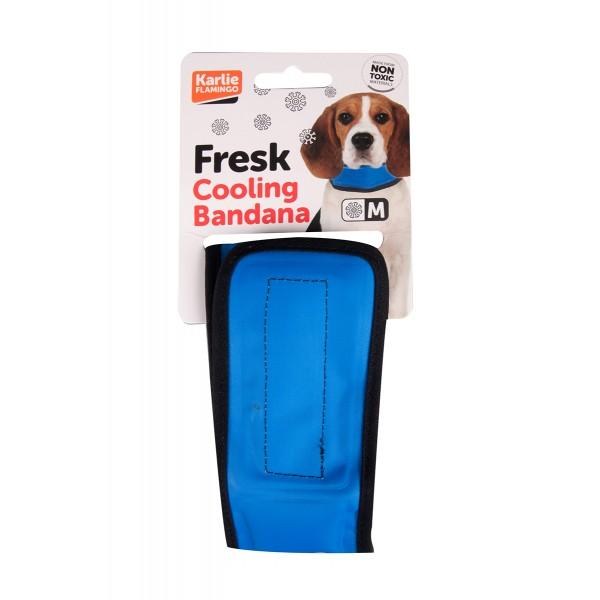 Collier rafraichissant pour chien