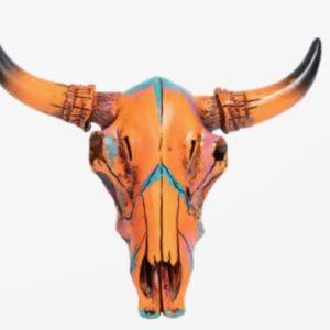 Crâne de vache petit modèle