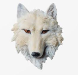 aimant loup blanc